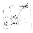 Chinky and Chang snoozing - ink by Roz McQuillan