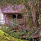 The Bath House at Waldheim Chalet, Cradle Mountain by TonyCrehan