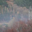 Glendalough Bell Tower by DES PALMER