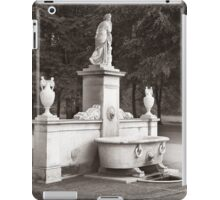 Bath iPad Case/Skin