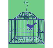 Birdcage... Photographic Print