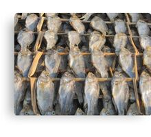 fish out to dry Canvas Print