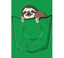 Sloth in a pocket Photographic Print