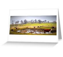Rural Scene Country NSW Greeting Card