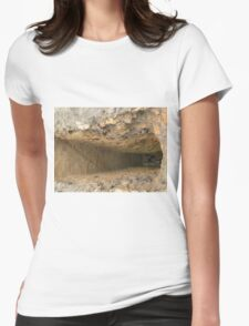 hole in the rock Womens Fitted T-Shirt