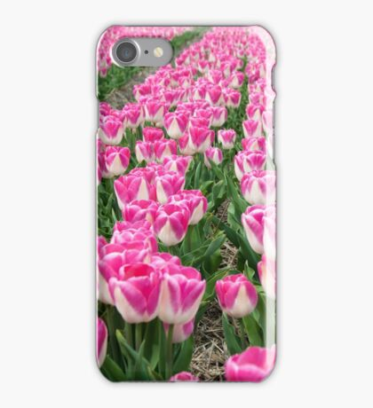 Dutch Tulips part 3 iPhone Case/Skin