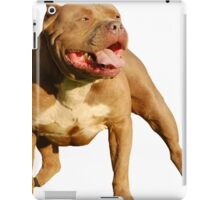 RED NOSE PIT BULL STICKERS iPad Case/Skin