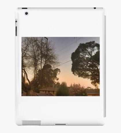evening light iPad Case/Skin