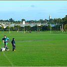 Ballywaltrim Park - Summer by dOlier