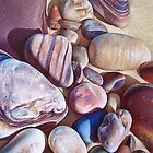 """Pallette of stones - Hallett Cove beach SA"" - detail  by Elena Kolotusha"