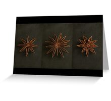 Star Anise Triptych Greeting Card
