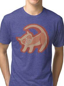 Grumpy King Tri-blend T-Shirt