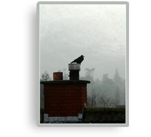 Kilbride crow Canvas Print
