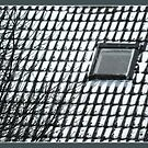 Snow roof 1 by dOlier