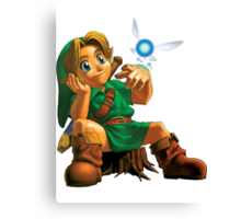 Young Link Canvas Print