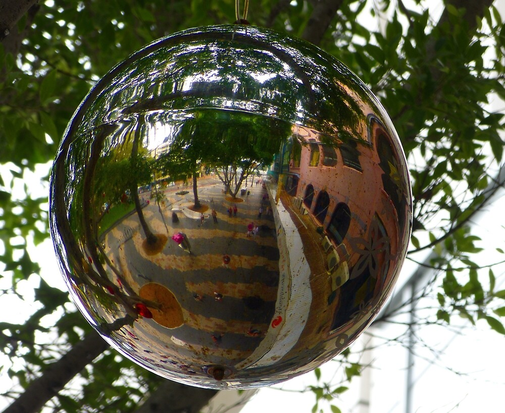 Bauble Reflection by Sharon Brown