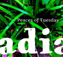 Radiate Peace Lilies Sticker