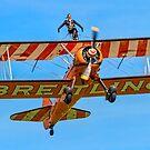 AeroSuperBatics Stearman with Wing-walker by Colin Smedley