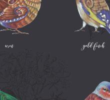 British Birds - Volume 2 Sticker