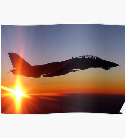 Tomcat at Sunset Poster