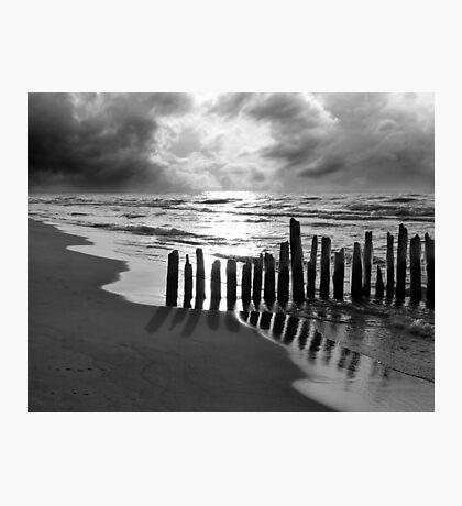 Where Seagulls Roam Photographic Print