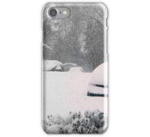February 2016 - Virginia Storm iPhone Case/Skin