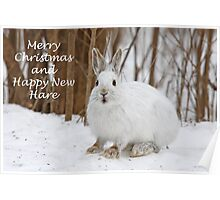 Snowshoe hare Christmas Poster