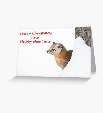 Christmas marten Greeting Card