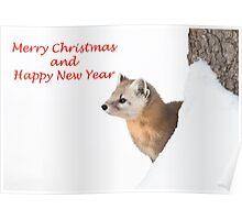 Christmas marten Poster