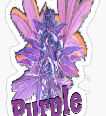 Purple Bud Sticker
