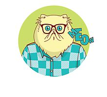 Cool Funny Hipster Cat Graphic Photographic Print