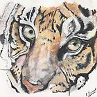 Tiger Face 2 by lizdomett