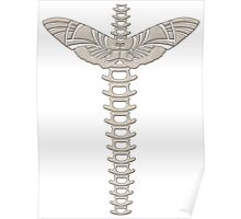 Winged spine Poster