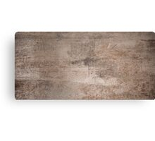 Grunge metal texture Canvas Print