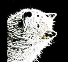 Glowing Wolf  by artonall