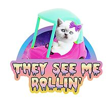 They See Me Rollin' cute kitty by Amy Grace