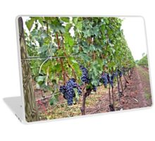 Wine Grape Niagara Laptop Skin