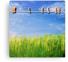 Daisy's Washing Day Canvas Print