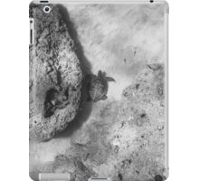 Sea Turtle V iPad Case/Skin
