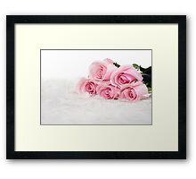 pink roses in fur Framed Print
