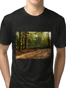 Fall in Olympic National Park Tri-blend T-Shirt