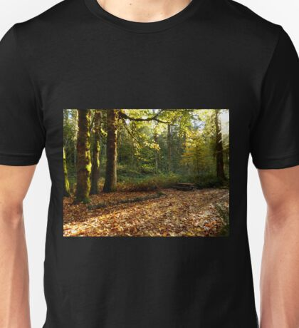 Fall in Olympic National Park Unisex T-Shirt