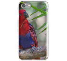 Rosella iPhone Case/Skin