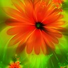 Red Fractal Flower by Jo Newman
