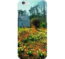 CHURCH,CADES COVE iPhone Case/Skin