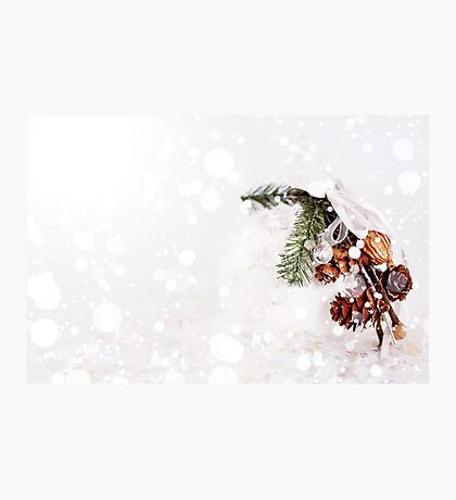 White snowy Christmas decoration with cones Photographic Print