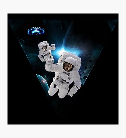 Cats Lost in Space Photographic Print
