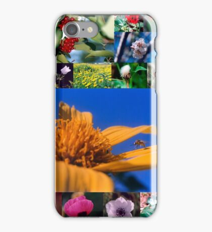 A collage of Israeli wild flowers iPhone Case/Skin