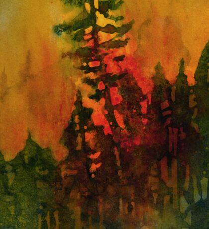 Forest Fire #5 Sticker