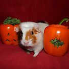 Cupcake with her Pepper & Kale Pumpkins by AnnDixon